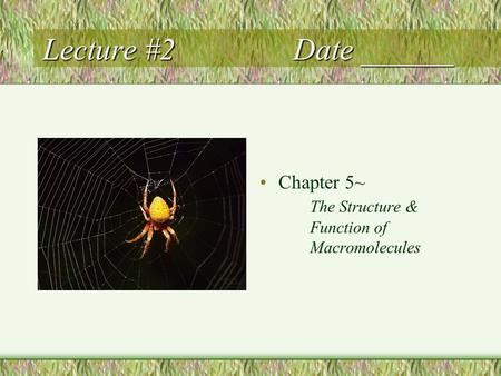 Lecture #2Date ______ Chapter 5~ The Structure & Function of Macromolecules.