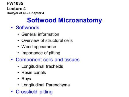 Softwood Microanatomy
