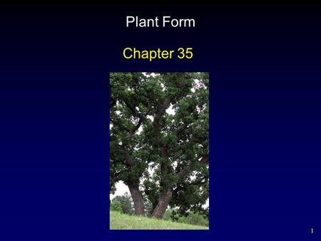 Plant Form Chapter 35.