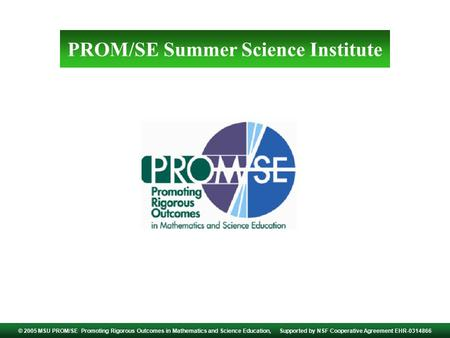 PROM/SE Summer Science Institute © 2005 MSU PROM/SE Promoting Rigorous Outcomes in Mathematics and Science Education, Supported by NSF Cooperative Agreement.