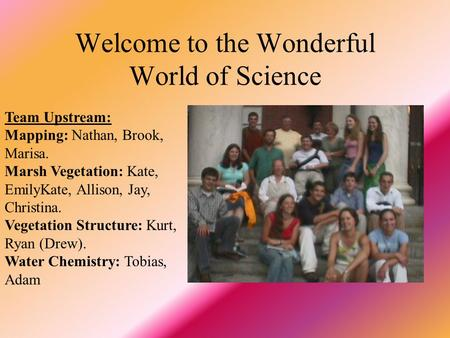Welcome to the Wonderful World of Science Team Upstream: Mapping: Nathan, Brook, Marisa. Marsh Vegetation: Kate, EmilyKate, Allison, Jay, Christina. Vegetation.