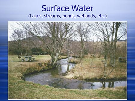 Surface Water (Lakes, streams, ponds, wetlands, etc.)