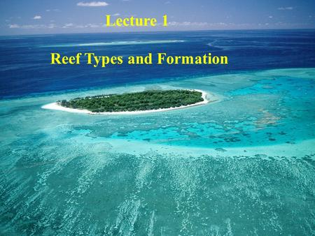 Lecture 1 Reef Types and Formation. Bonaire. N.A.