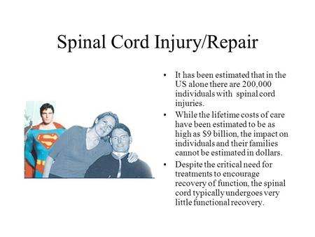 Spinal Cord Injury/Repair