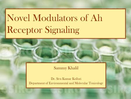 Novel Modulators of Ah Receptor Signaling Sammy Khalil Dr. Siva Kumar Kolluri Department of Environmental and Molecular Toxicology.