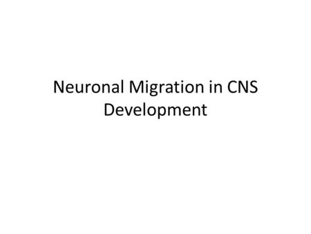 Neuronal Migration in CNS Development