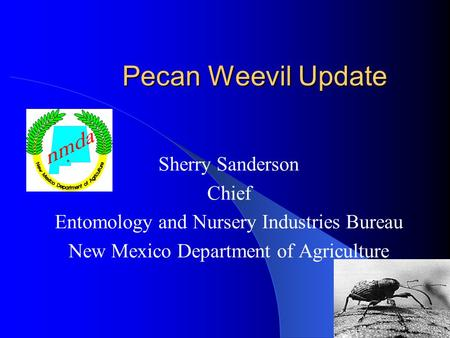 Pecan Weevil Update Sherry Sanderson Chief