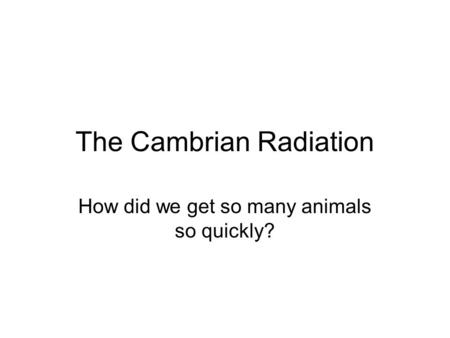 The Cambrian Radiation How did we get so many animals so quickly?