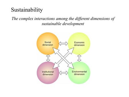 Sustainability The complex interactions among the different dimensions of sustainable development.