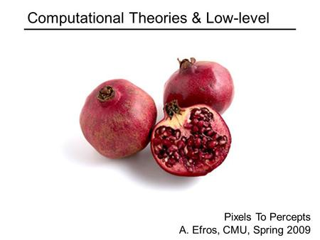 Computational Theories & Low-level Pixels To Percepts A. Efros, CMU, Spring 2009.