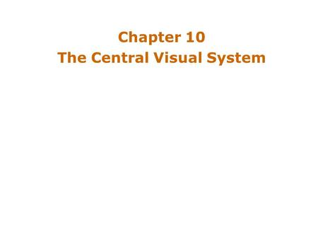 Chapter 10 The Central Visual System. Introduction Neurons in the visual system –Neural processing results in perception Parallel pathway serving conscious.