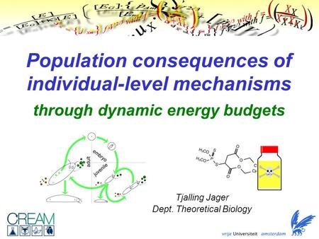Population consequences of individual-level mechanisms through dynamic energy budgets Tjalling Jager Dept. Theoretical Biology.