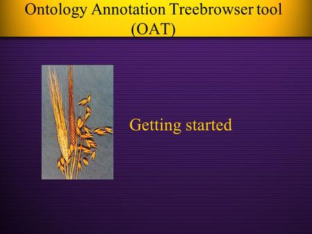 Ontology Annotation Treebrowser tool (OAT) Getting started.