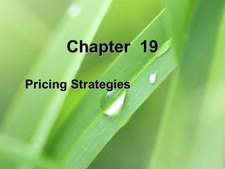 Chapter 19 Pricing Strategies.