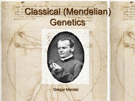 Classical (Mendelian) Genetics Gregor Mendel. Vocabulary Genetics: The scientific study of heredityGenetics: The scientific study of heredity Allele: