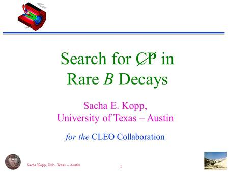 Sacha Kopp, Univ. Texas -- Austin 1 Search for CP in Rare B Decays Sacha E. Kopp, University of Texas – Austin for the CLEO Collaboration.