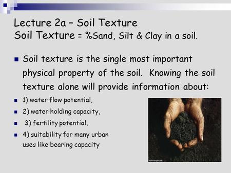 Lecture 2a – Soil Texture Soil Texture = %Sand, Silt & Clay in a soil. Soil texture is the single most important physical property of the soil. Knowing.