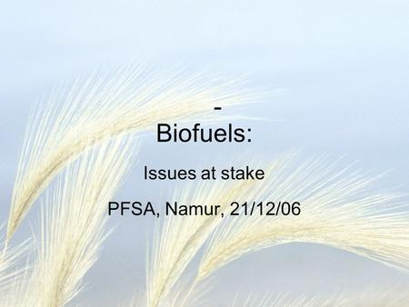 - Biofuels: Issues at stake PFSA, Namur, 21/12/06.