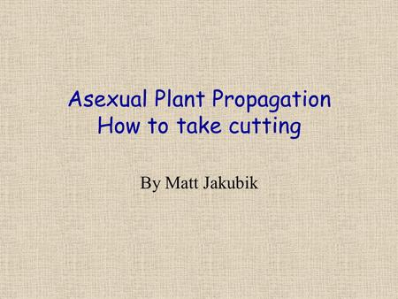 Asexual Plant Propagation How to take cutting By Matt Jakubik.