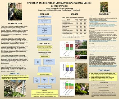 Evaluation of a Selection of South African Plectranthus Species as Indoor Plants Ryan J. Cheng and Professor Marilyn Daly Department of Biological Sciences,