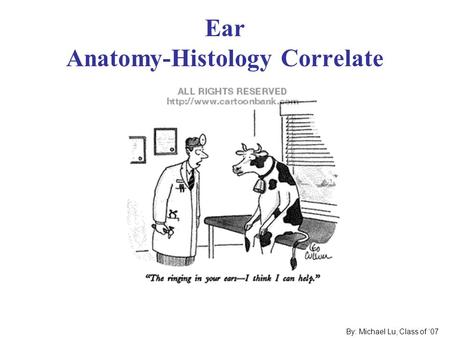 Ear Anatomy-Histology Correlate