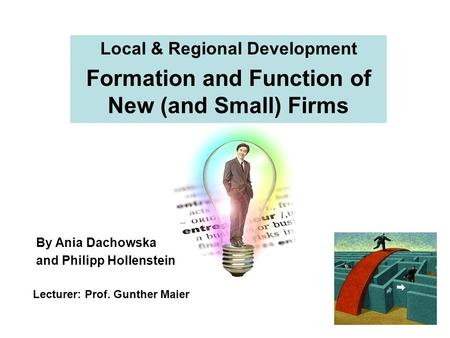 Local & Regional Development Formation and Function of New (and Small) Firms Lecturer: Prof. Gunther Maier By Ania Dachowska and Philipp Hollenstein.