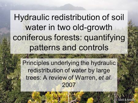 Hydraulic redistribution of soil water in two old-growth coniferous forests: quantifying patterns and controls Principles underlying the hydraulic redistribution.