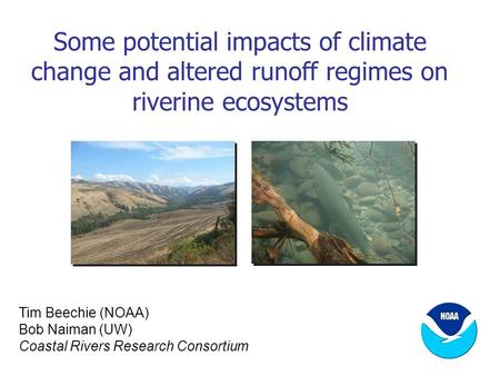 Some potential impacts of climate change and altered runoff regimes on riverine ecosystems Tim Beechie (NOAA) Bob Naiman (UW) Coastal Rivers Research Consortium.