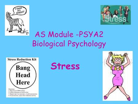 AS Module -PSYA2 Biological Psychology Stress. The Biological Approach Views psychology from the physical perspective of the body Argues understanding.