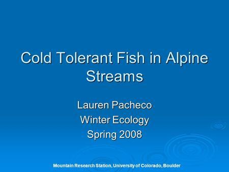 Cold Tolerant Fish in Alpine Streams Lauren Pacheco Winter Ecology Spring 2008 Mountain Research Station, University of Colorado, Boulder.