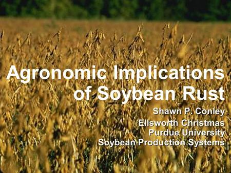 Agronomic Implications of Soybean Rust Shawn P. Conley Ellsworth Christmas Purdue University Soybean Production Systems.