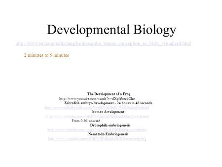 Developmental Biology The Development of a Frog  Zebrafish embryo development - 24 hours in 46 seconds
