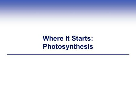 Where It Starts: Photosynthesis. Introduction  Before photosynthesis evolved, Earth's atmosphere had little free oxygen  Oxygen released during photosynthesis.