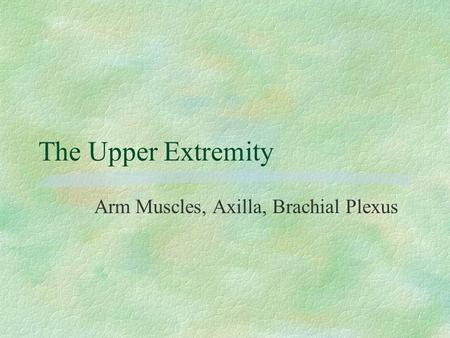 The Upper Extremity Arm Muscles, Axilla, Brachial Plexus.