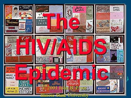 The HIV/AIDS Epidemic © 2001 John B. Pryor Illinois State University.
