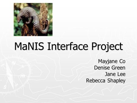 MaNIS Interface Project Mayjane Co Denise Green Jane Lee Rebecca Shapley.