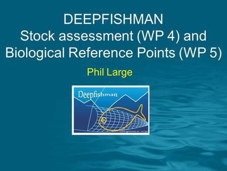 DEEPFISHMAN Stock assessment (WP 4) and Biological Reference Points (WP 5) Phil Large.