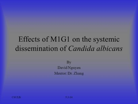 CSULB5.3.04 Effects of M1G1 on the systemic dissemination of Candida albicans By David Nguyen Mentor: Dr. Zhang.