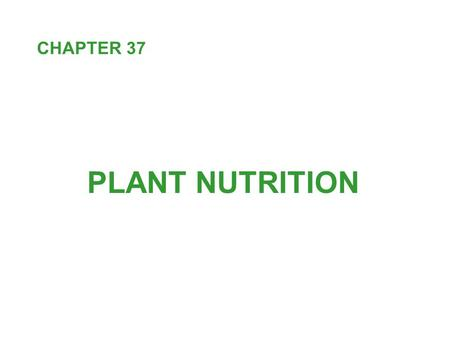 PLANT NUTRITION CHAPTER 37. Every organism is an open system connected to its environment by a continuous exchange of energy and materials. Energy flow.