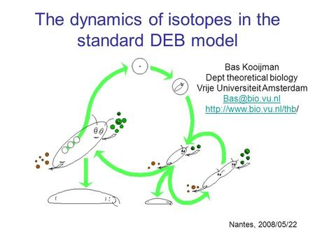 Bas Kooijman Dept theoretical biology Vrije Universiteit Amsterdam  The dynamics of isotopes.