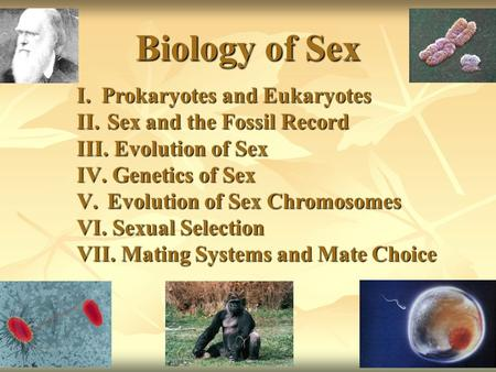 Biology of Sex I.Prokaryotes and Eukaryotes II. Sex and the Fossil Record III. Evolution of Sex IV. Genetics of Sex V. Evolution of Sex Chromosomes VI.
