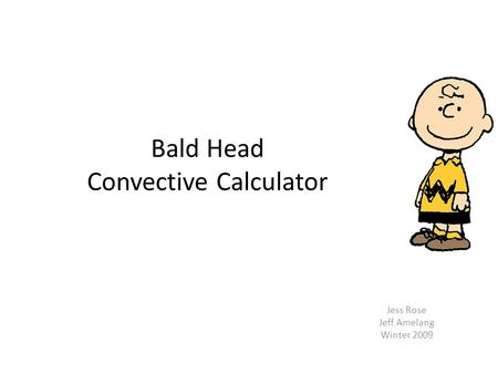 Bald Head Convective Calculator Jess Rose Jeff Amelang Winter 2009.
