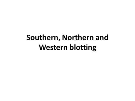 Southern, Northern and Western blotting. Comparison of Southern, Northern, and Western analyses of Gene X.