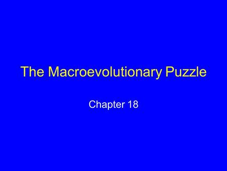 The Macroevolutionary Puzzle