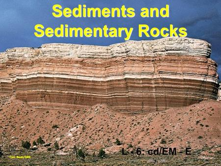 Sediments and Sedimentary Rocks Tom Bean/DRK L - 6: cd/EM - E.