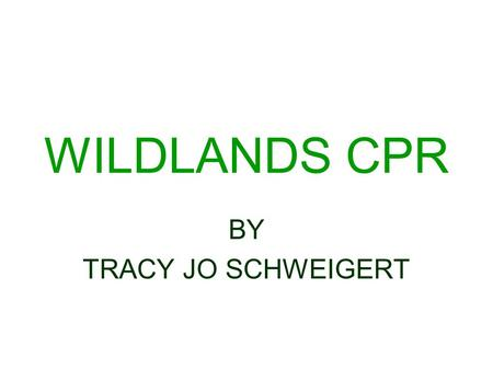 WILDLANDS CPR BY TRACY JO SCHWEIGERT. RESTORING NATURAL AREAS & STOPPING THE MOTORIZED ABUSE OF PUBLIC LANDS Wildlands CPR revives and protects wild places.