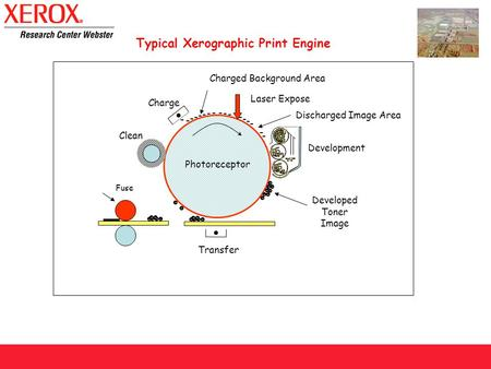 Charge Laser Expose Transfer Clean Development - - - - - - - - - - - - - - - - - Developed Toner Image Charged Background Area Discharged Image Area Photoreceptor.