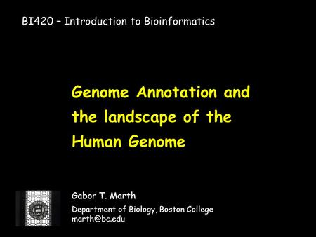Genome Annotation and the landscape of the Human Genome Gabor T. Marth Department of Biology, Boston College BI420 – Introduction to Bioinformatics.