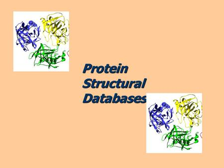 ProteinStructuralDatabases. Proteins are built from amino-acids. Introduction H | NH2-c-CO2H | R.