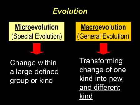 Evolution Microevolution (Special Evolution) Macroevolution (General Evolution) Change within a large defined group or kind Transforming change of one.